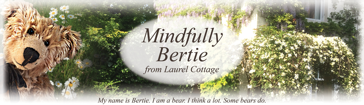 Mindfully Bertie