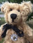 Teddy Bears' Picnic: Bertie proudly wearing his badge.